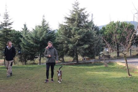 Eyüp Köpek Eğitim Çiftliği